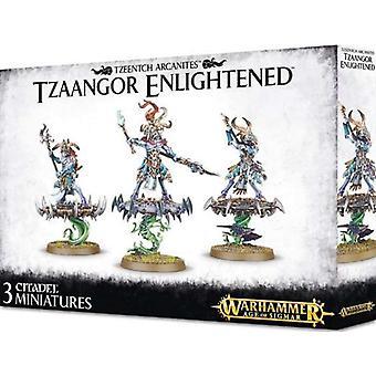 Games Workshop Warhammer Age Of Sigmar - aufgeklärten Tzaangor
