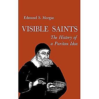 Sichtbaren Heiligen: Geschichte einer puritanischen Idee