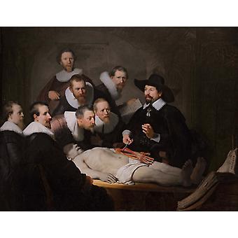 La Leçon d'anatomie du Dr Tulp, REMBRANDT, 50x40cm
