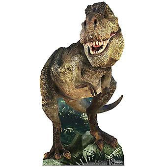Tyrannosaurus Rex Dinosaur Natural History Museum Mini Cardboard Cutout / Standee