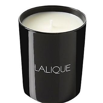 Lalique Candle 190g-Yuzu Shikokou