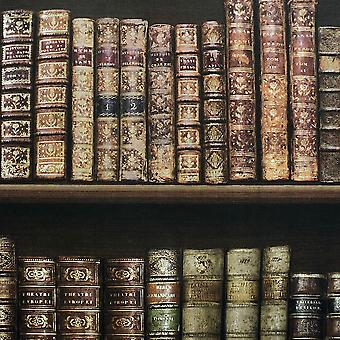 Antique Bookcase Wallpaper Brown - Direct Wallpapers 575208
