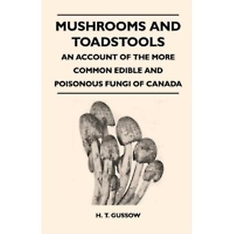 Mushrooms And Toadstools  An Account Of The More Common Edible And Poisonous Fungi Of Canada by Gussow & H. T.