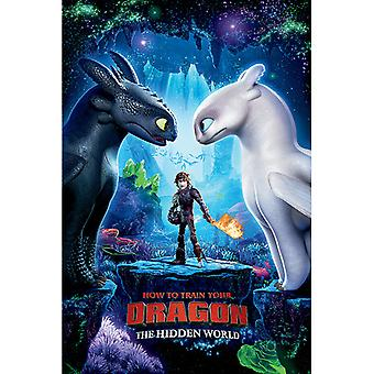 Miten kouluttaa Dragon Hidden World One Sheet Maxi Juliste