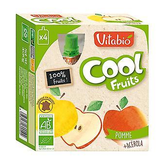 Gourde Cool Fruits Pomme BIO 4 unités de 90g