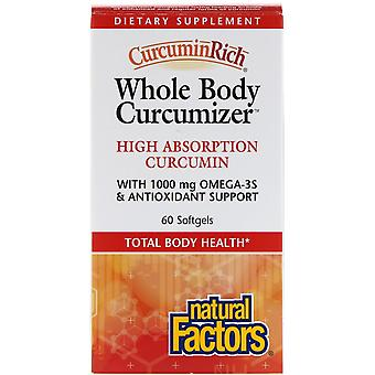 Natural Factors, CurcuminRich, Whole Body Curcumizer, 60 Softgels