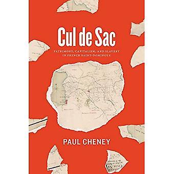 Cul de Sac: patrimonium, kapitalisme, en slavernij in Franse Saint-Domingue