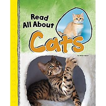 Read All about Cats (Read All about It)