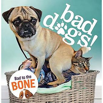 Bad Dogs by Virginia Woof - 9781250104991 Book