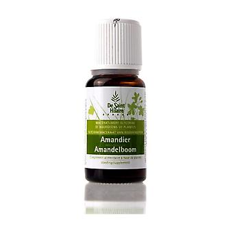 Organic Macerat Almond 30 ml