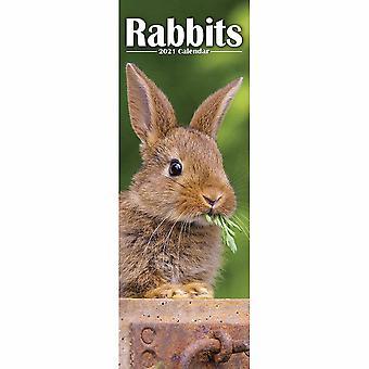 Otter House 2021 Slim Calendar-rabbits