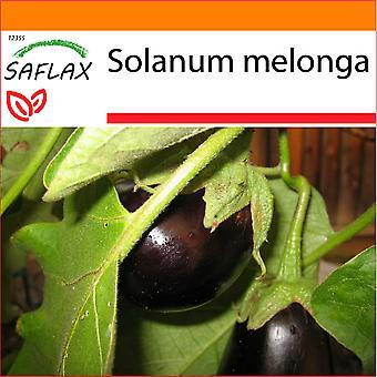 Saflax - Garden in the Bag - 20 seeds - Eggplant - Aubergine - Melanzana - Berenjena - Eierbaum