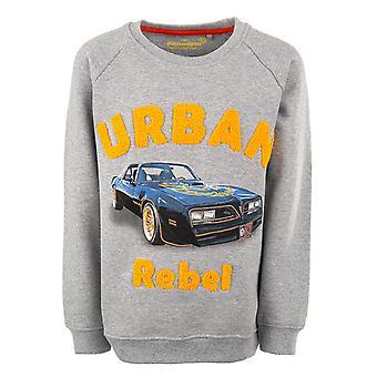 Stones and Bones Boys Sweater Imagine Urban Rebel M.Grey