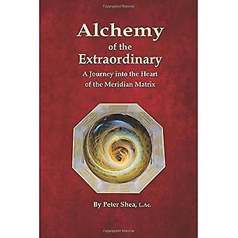 Alchemie des Außergewöhnlichen: Eine Reise ins Herz der Meridian-Matrix