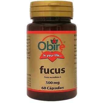 Obire Fucus 60 Cápsulas 500 mg