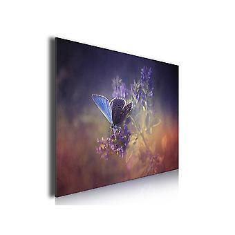 Tableau papillon bleu et brin de lavande, 80x50cm