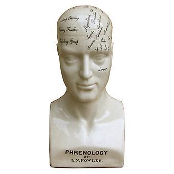 Große Keramik Phrenologie Kopf, 42cm