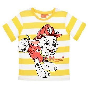 Boys Paw Patrol Short Sleeve T-Shirt / Top