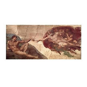 Perustaminen Adam Juliste Tulosta Michelangelo Buonarroti (40 x 20)