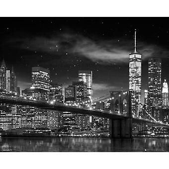 New York Freedom Tower - Black and White Poster Poster Print