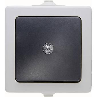 Kopp 566356003 Wet room switch product range Switch Nautic Grey