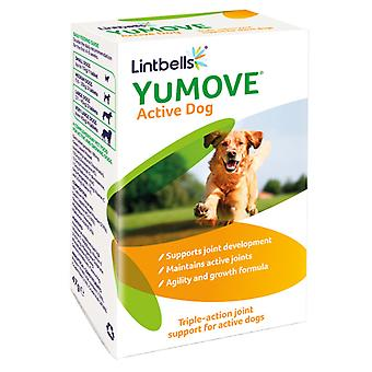 Lintbells Yumove Active Dog Chewable Joint Tabletten