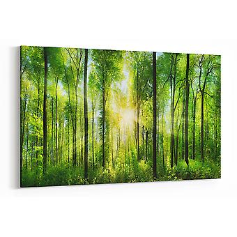 Large A1 A2 A3 Panel Panoramic Canvas Wall Art Painting of Forrest for your Living Room Prints - Pictures