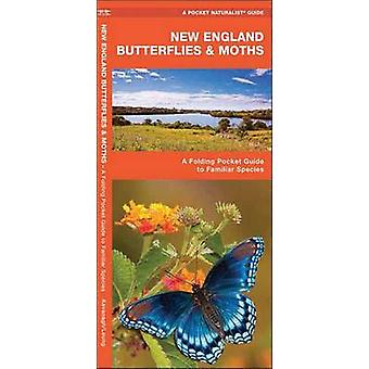 New England Butterflies & Moths - A Folding Pocket Guide to Famili