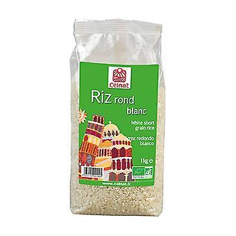 Weißer runder Reis None