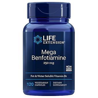 Extensão da Vida Mega Benfotiamine, 250 mgs, 120 vcaps