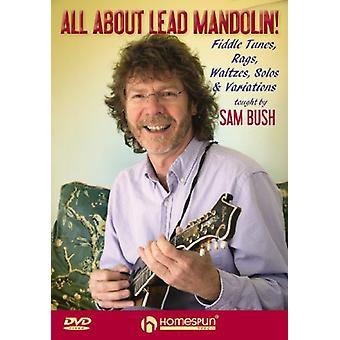 Sam Bush - All About Lead Mandolin [DVD] USA import
