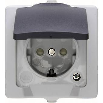 Kopp 107856005 Gama de productos de interruptor de sala húmeda PG socket (+ tapa) Gris náutico