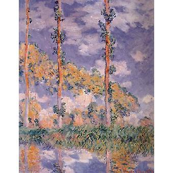 Trois arbres, Claude Monet, 50x40cm
