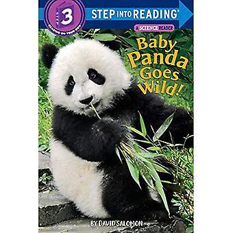 Babypanda geht Wild! (Einzelschritt Lesung)