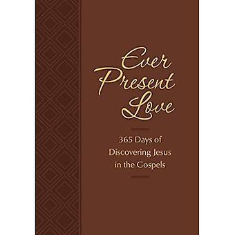Altijd aanwezige liefde: 365 dagen van het ontdekken van Jezus in de Evangelies