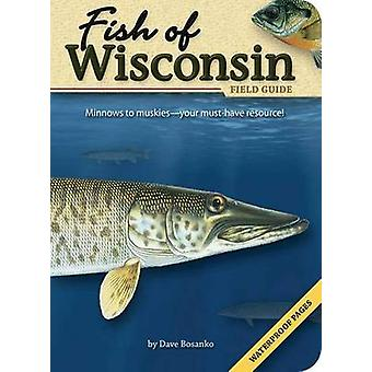 Fish of Wisconsin Field Guide by Dave Bosanko - 9781591931942 Book