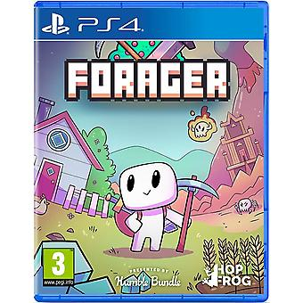 Forager PS4 spill