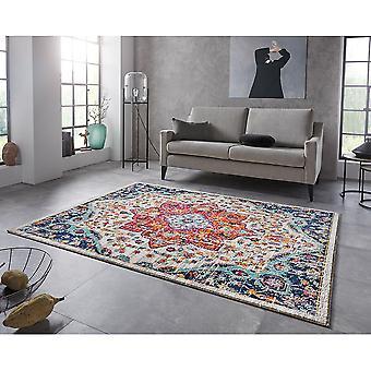 Oriental Design Short Floral Rug Bara Multicolor