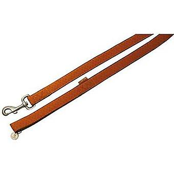 Nayeco MacLeather brown dog leash L (Dogs , Collars, Leads and Harnesses , Leads)