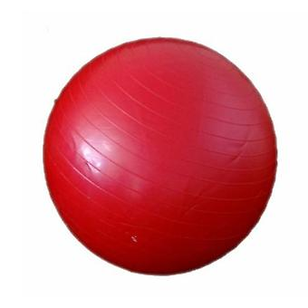 Morgan Gym Ball 55 cm