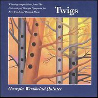 Sieg/McKinley/Macy/Vayo - Twigs [CD] USA import
