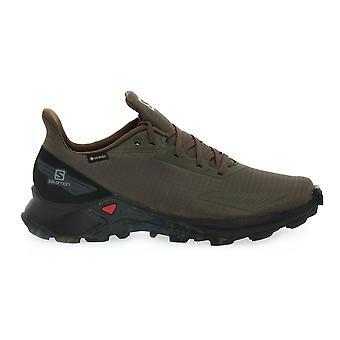 सॉलोमन अल्फाक्रॉस ब्लास्ट Gtx 411058 ट्रेकिंग सभी वर्ष पुरुषों के जूते