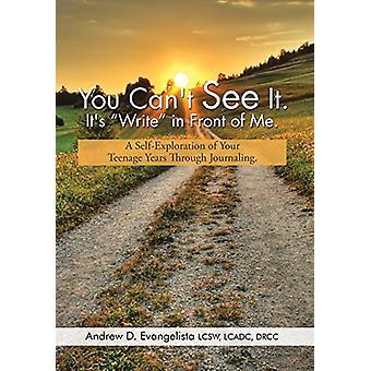 "You Can't See It. It's ""Write"" in Front of Me. - A Self-Expl"