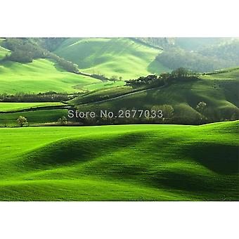 Photo Wallpaper, Wall Cover, Lawn Hawthorn, Natural Scenery, Large Mural