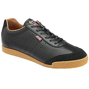 Gola Made IN England 1905 Harrier Luxe CMB250BB universal all year men shoes