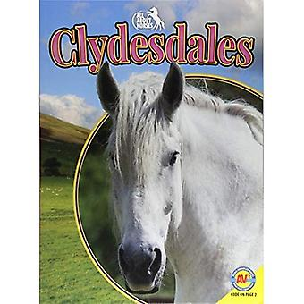 Clydesdales (All about Horses)