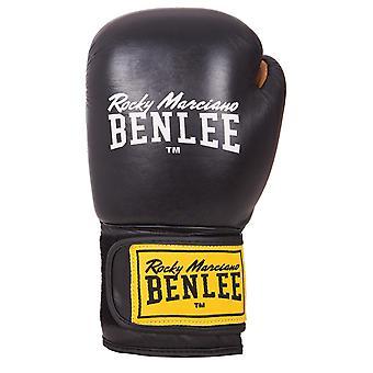 William boxing gloves of Evans