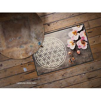Fleur de lion salon de tapis tapis lavables saleté de vie 50 x 75 cm