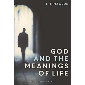 God and the Meanings of Life - What God Could and Couldn't Do to Make