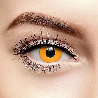 Lentes de contato coloridas de abóbora laranja (Diariamente)